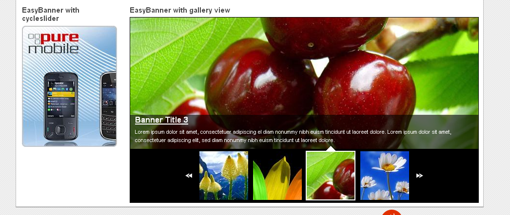 Easy banner, banner slider, cycle slider, gallery view